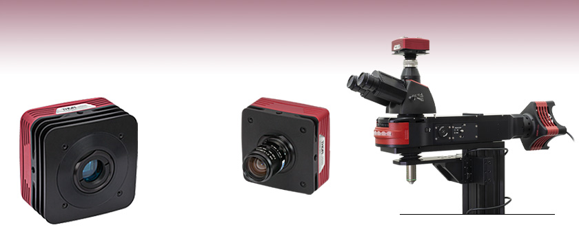 1.4 Megapixel CCD Scientific Cameras for Microscopy