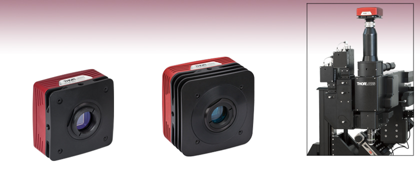 4 Megapixel Monochrome and Color CCD Cameras ... : cmos vs ccd low light - www.canuckmediamonitor.org