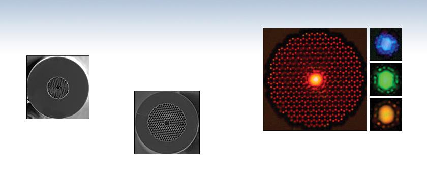 Hollow Core Photonic Crystal Fibers
