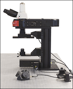 Dodt Contrast Microscope