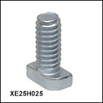 Hammerhead Screws for XE Series Rails