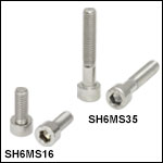 M6 x 1.0 Stainless Steel Cap Screws