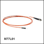 Ø200 µm Core, 0.39 NA SMA to Ferrule Patch Cables with Ø2.5 mm Ferrules, PVC Jacket