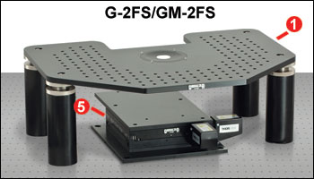 G-2FS and GM-2FS