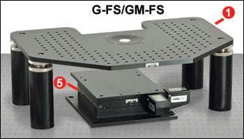 G-FS and GM-FS