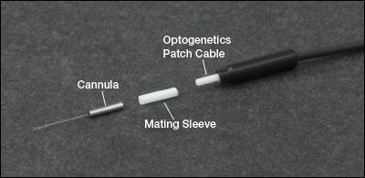 Optogenetics Bifurcated Fiber Bundles 2 Fibers